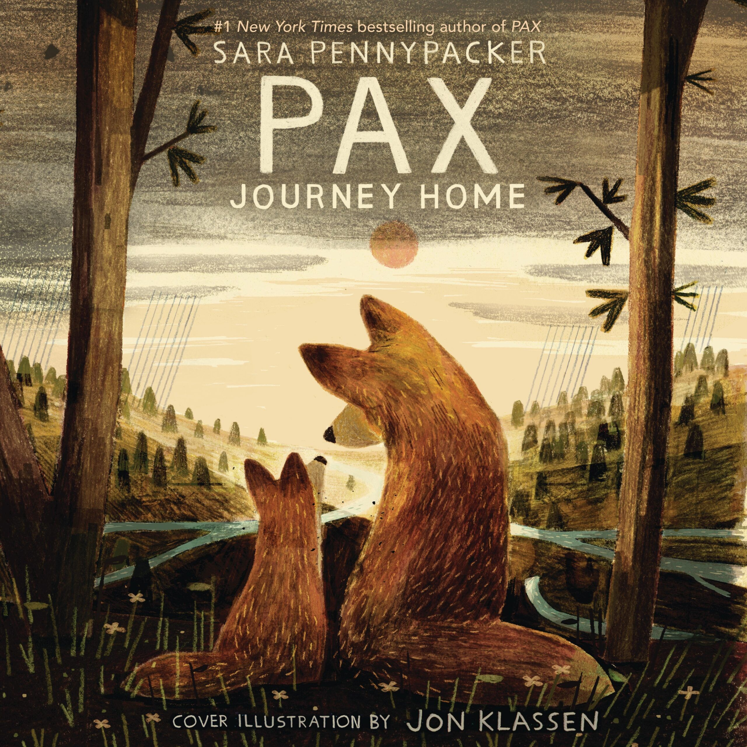 PAX, JOURNEY HOME audiobook cover