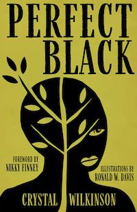 A graphic of the cover of Perfect Black by Crystal Wilkinson