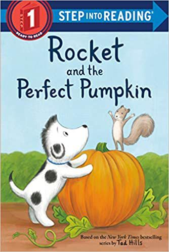 Rocket and the Perfect Pumpkin Book Cover
