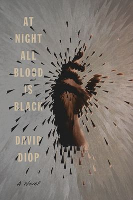At Night All Blood is Black by David Diop
