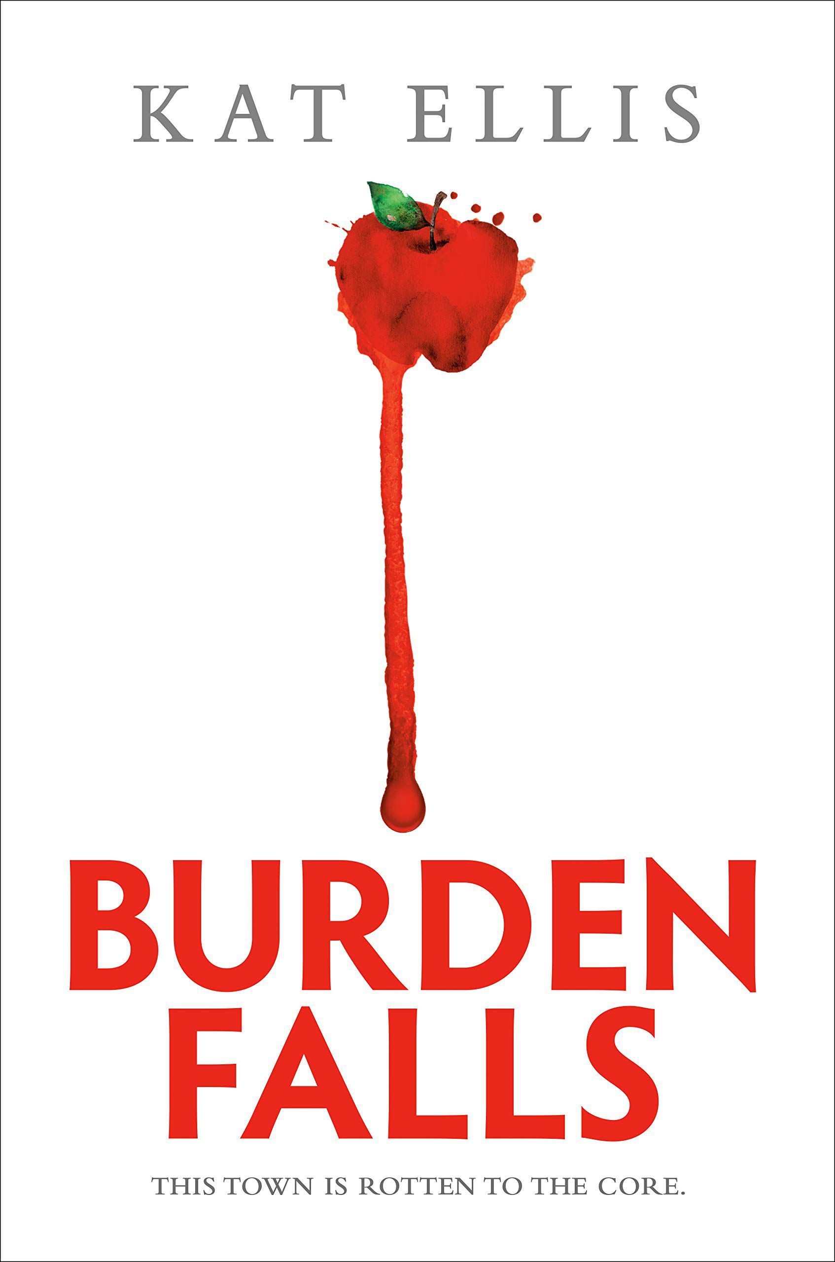 burden falls book cover