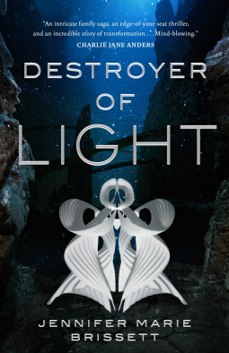 Destroyer of Light Book Cover