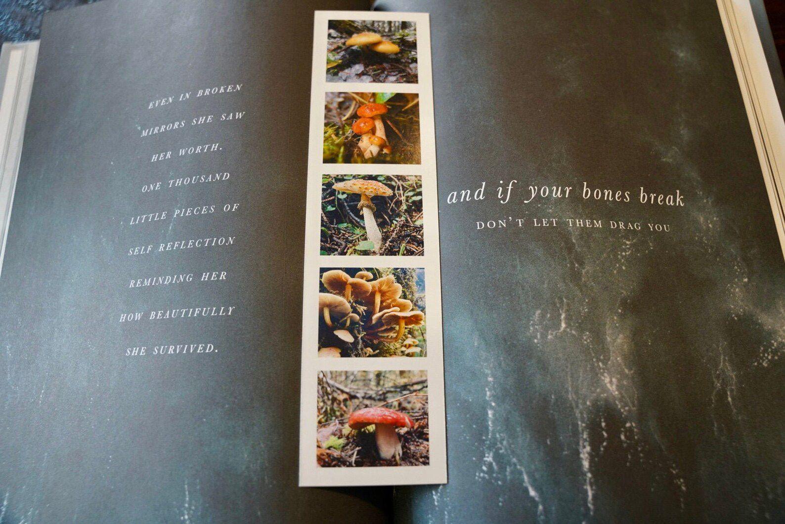 Mushroom bookmark, featuring four photographs of real mushrooms.