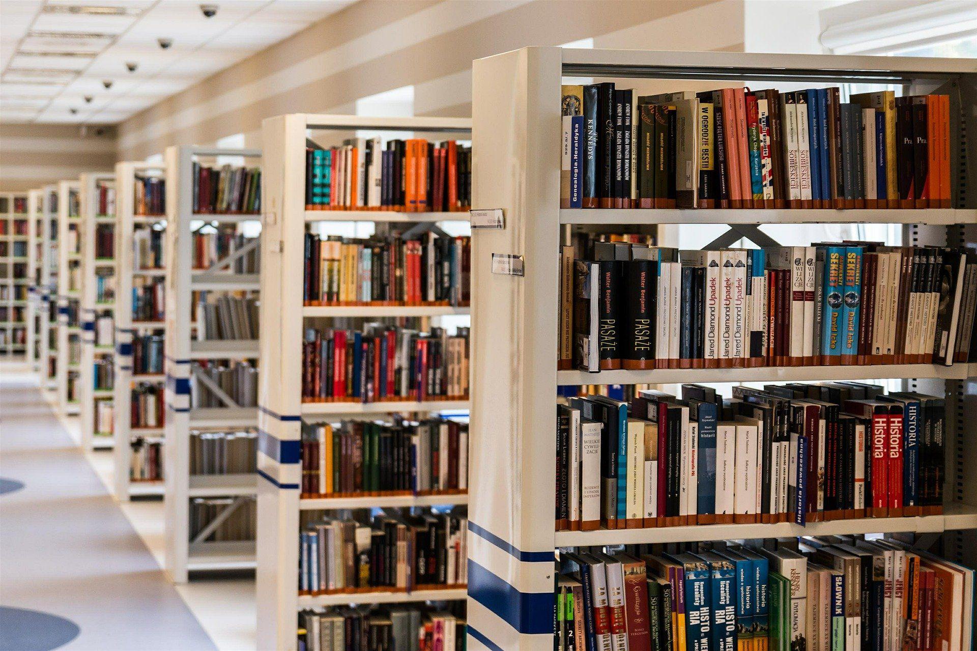 Public Library Shelves