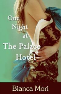 One Night at the Palace Hotel cover