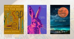 three covers of new women in translation books