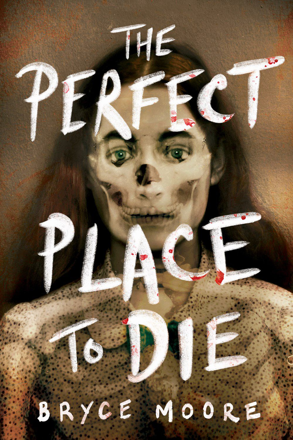 the perfect place to die book cover