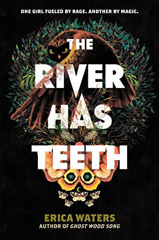 the river has teeth book cover