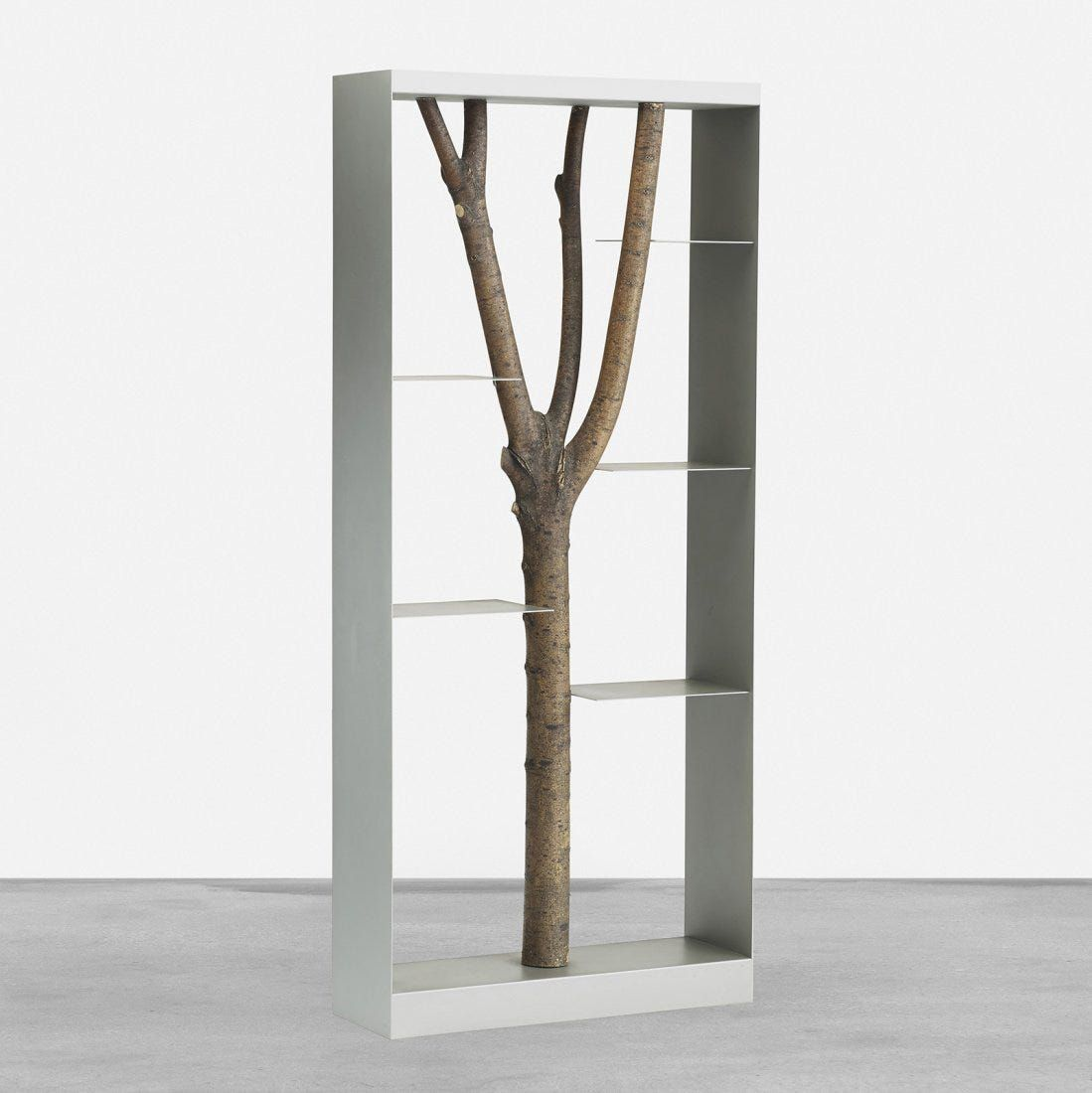 bookcase with branch