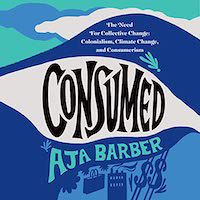 A graphic of the cover of Consumed by Aja Barber