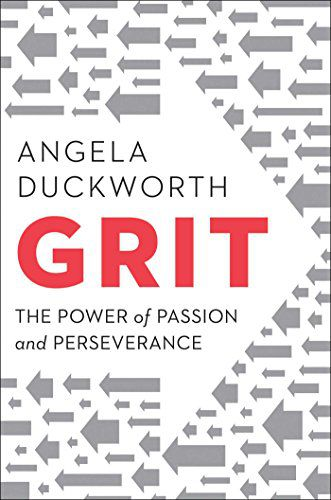 Grit cover