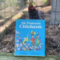 A chicken with the book Mr. Watson's Chickens