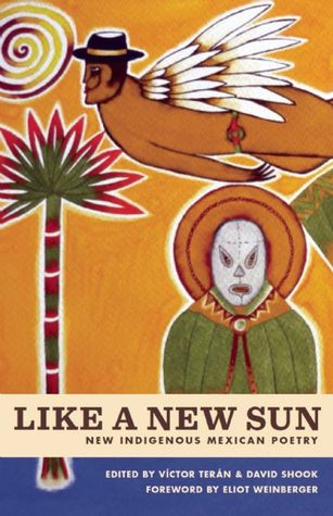 Like a New Sun book cover