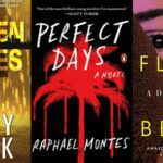 collage of three book covers: Broken Places; Perfect Days; and A Double Life