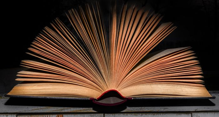an open book with the pages fanned out