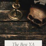 pinterest image for ya pirate books