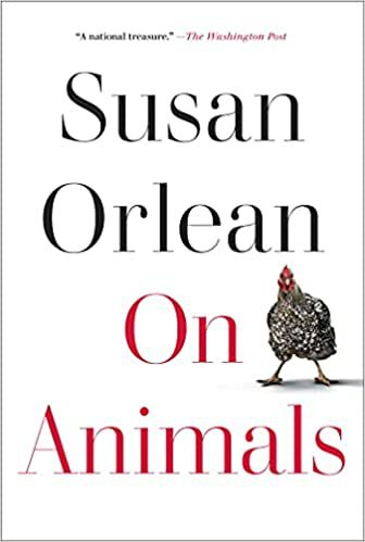 cover of On Animals by Susan Orlean