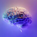 a brain lit by neon lights against a purple background