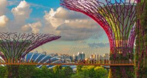 image of people walking across bridge in the Super Tree Grove at Gardens by the Bay.