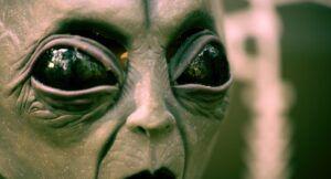 image of an alien face