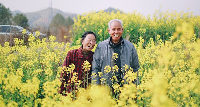 Image of an Asian couple who is older in a yellow field