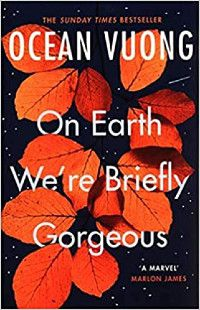 The cover of On Earth We're Briefly Gorgeous